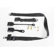 APV-S Apv Static Lap Belt W/Web Buckle