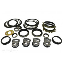 Swivel Hub Bearing and Seal Kit