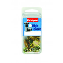 Champion Parts Bolts Nuts 5/16 x 2 1/2in SP23892